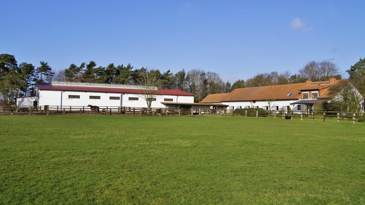 Horsemanship am Löhbusch