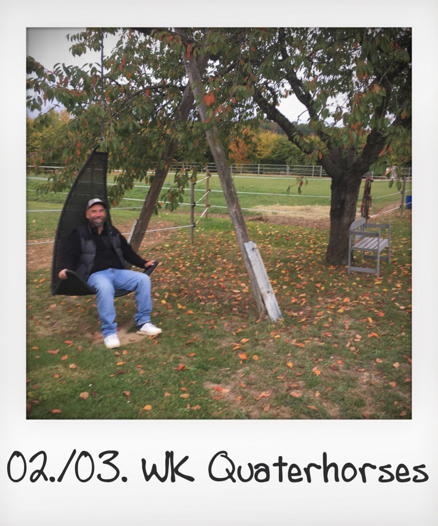 WK Quarterhorses