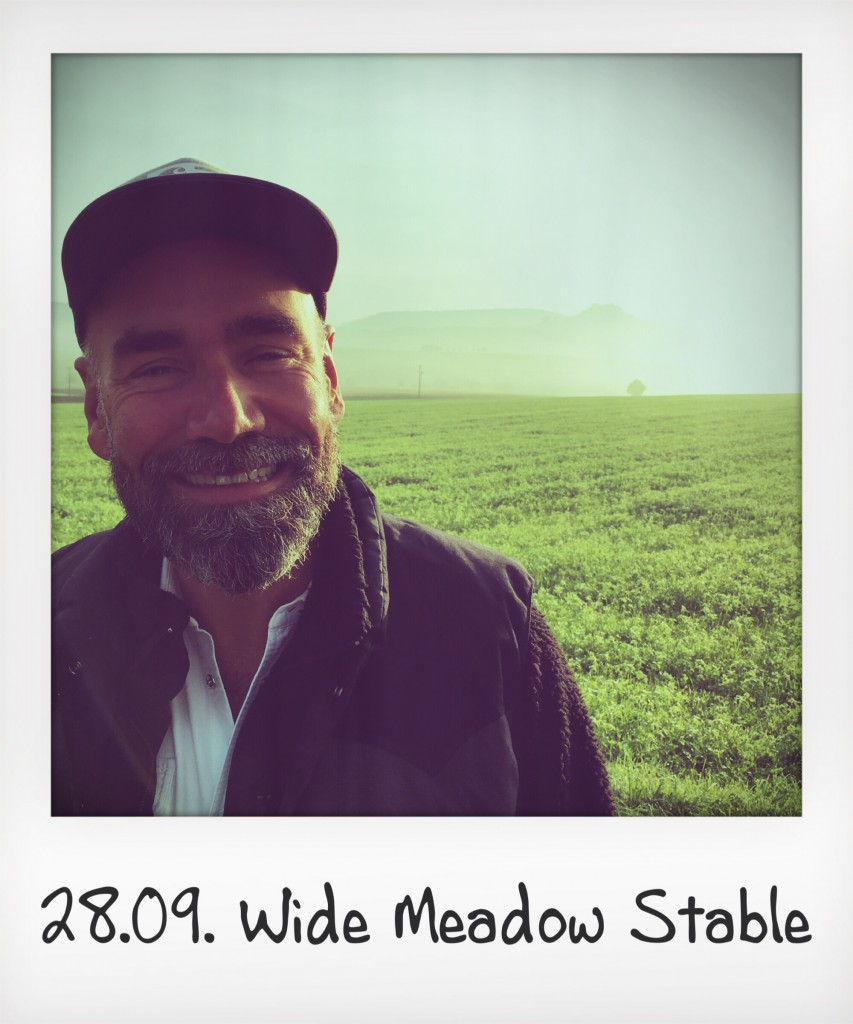 wide meadow stable