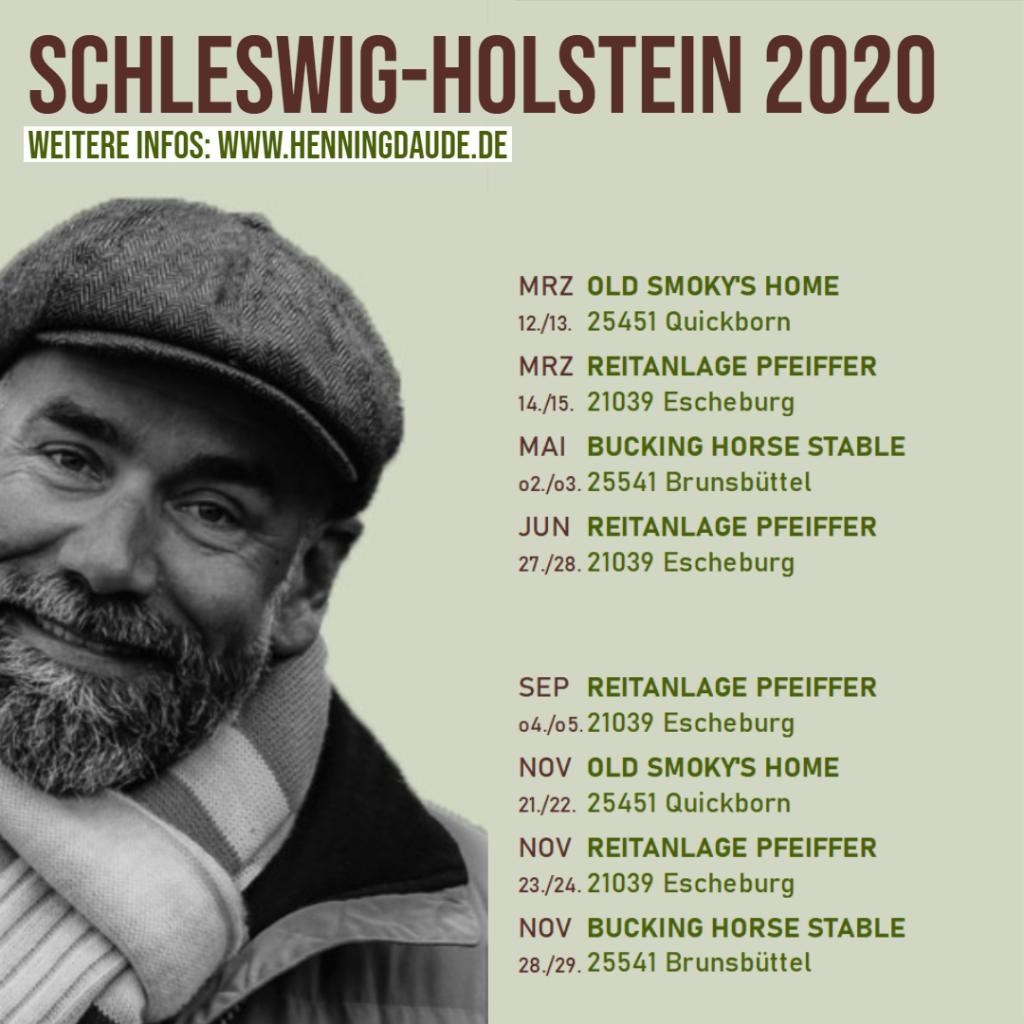 news schleswig holstein