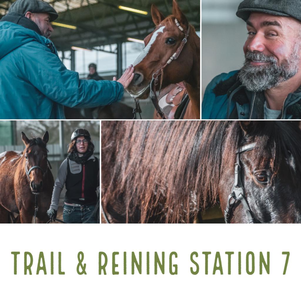 trail & reining