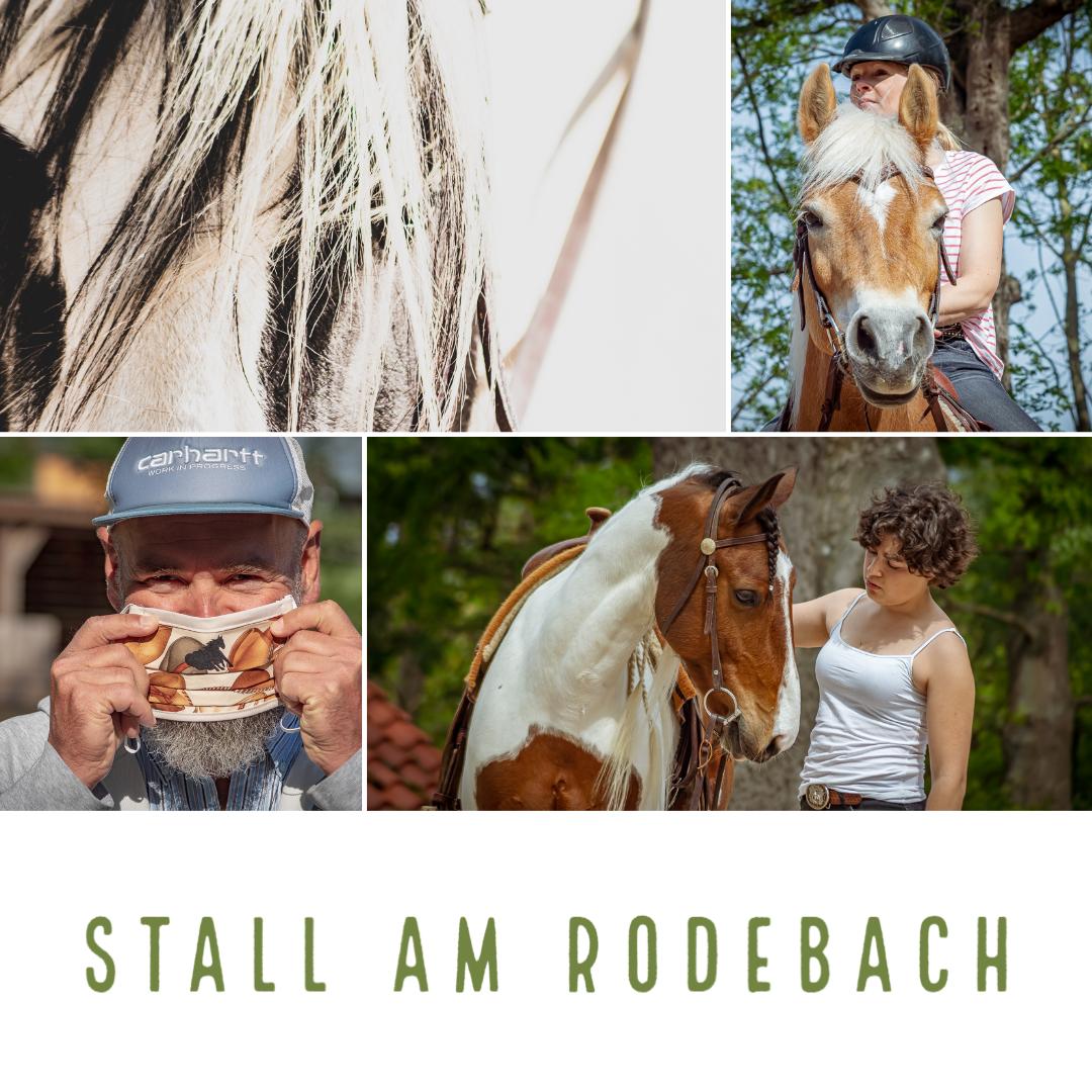 stall am rodebach