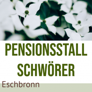 Pensionsstall Schwörer